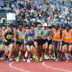 Maratoneti a confronto